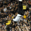 CU cheerleader, Ozell Williams, flips over Ralphie.<br /> Cliff Grassmick / October 2, 2010