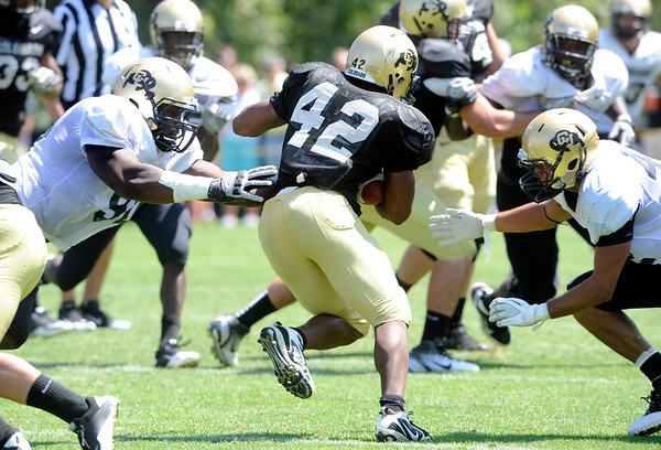 """Josh Ford, 42, breaks through Stephane Nembot, 90, and K..T. Tu'umalo, 42 during the University of Colorado Football team scrimmage on Saturday August 13, 2011.<br /> For more photos and video interviews from the scrimmage go to  <a href=""""http://www.buffzone.com"""">http://www.buffzone.com</a> and dailycamera.com<br /> Photo by Paul Aiken  August 13,  2011."""