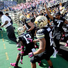 Embree and Ralphie47.JPG University of Colorado head coach, Jon Embree, leads his team behind Ralphie for the start of the CU UCLA game.<br /> Cliff Grassmick  / September 29, 2012