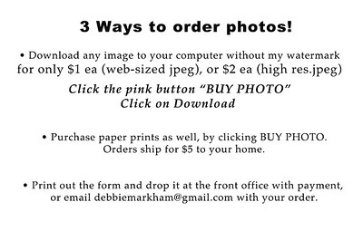 CUHS Ways to order
