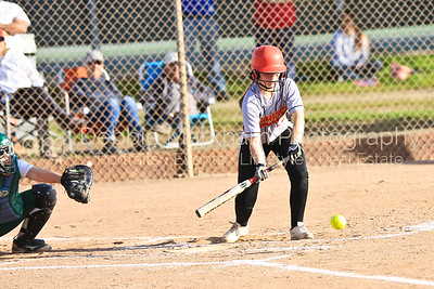 3-1-16 CUHS vs Templeton Softball-9620