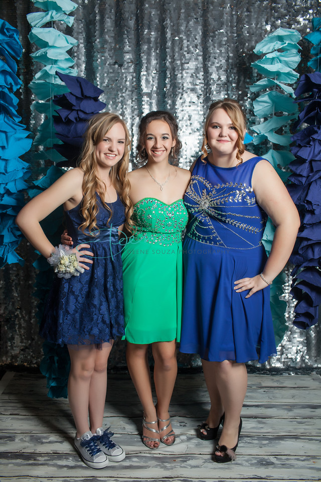 CVC_WINTERFORMAL_2014_0061