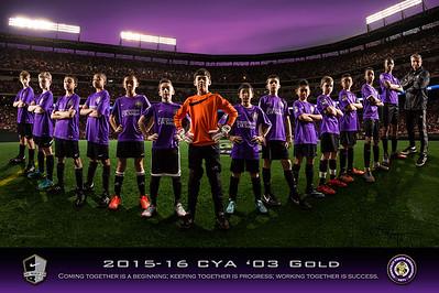 CYA 03 Gold - Fall 2015 Team Poster