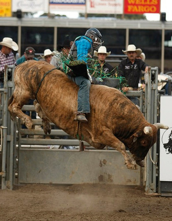 Rodeo: Professional Bull Riders - 071713