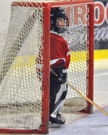 Tim Hockey