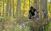 Alpine Odyssey 2012 - Lance Armstrong