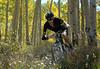 Alpine Odyssey 2012-Lance Armstrong