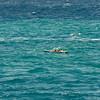 Molokai to Oahu Paddleboard Race 2009-144