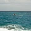 Molokai to Oahu Paddleboard Race 2009-222