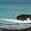 Molokai to Oahu Paddleboard Race 2009-86