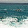Molokai to Oahu Paddleboard Race 2009-78