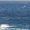 Quicksilver  Molokai to Oahu Paddleboard Race 2006s-3