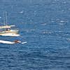 Quicksilver  Molokai to Oahu Paddleboard Race 2006s-8