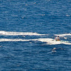 Quicksilver  Molokai to Oahu Paddleboard Race 2006s-10