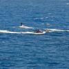 Quicksilver  Molokai to Oahu Paddleboard Race 2006s-9