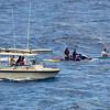 Quicksilver  Molokai to Oahu Paddleboard Race 2006s-15