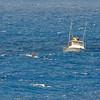Quicksilver  Molokai to Oahu Paddleboard Race 2006s-6