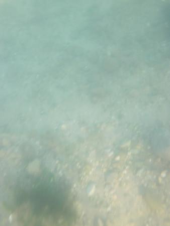 Kayaking at Bluff Pt 12/26/11