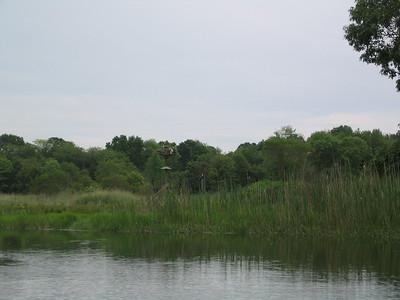 Osprey paddle