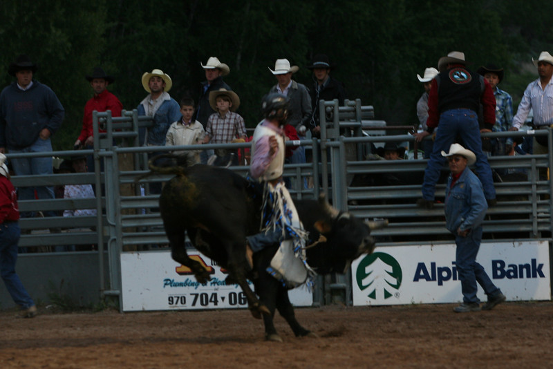 jesse Fortnor rides a bull in carbondale wildwest rodeo