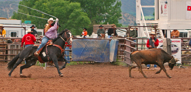 Tad Simms readies his throw Carbondale Wildwest Rodeo
