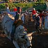 Good ride on a good bull
