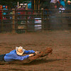 First shot of a cowboy trying to hang on to the cowhide as the galloping horse races away.