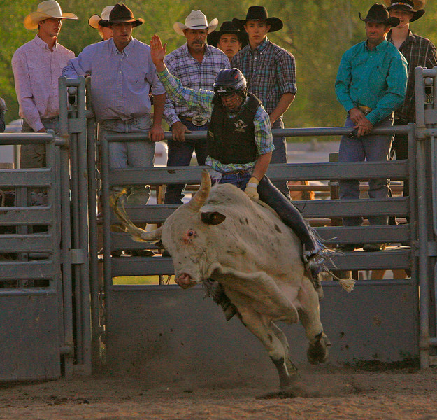 First of sequence of a good bull ride