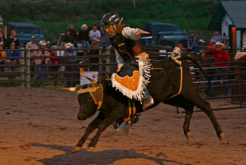 Young calf rider. I have more shots of this same rider