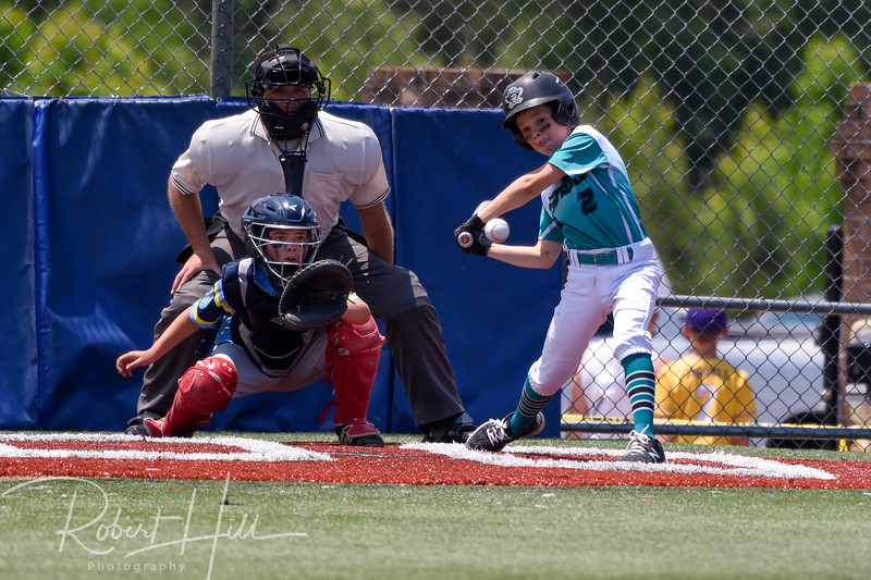 Pfafftown Raiders Baseball