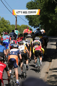 Cat 4 pack on the hill