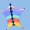Cerfs-volants-Vrbier 04082013_0003