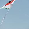 Cerfs-volants-Vrbier 04082013_0005