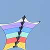 Cerfs-volants-Vrbier 04082013_0001