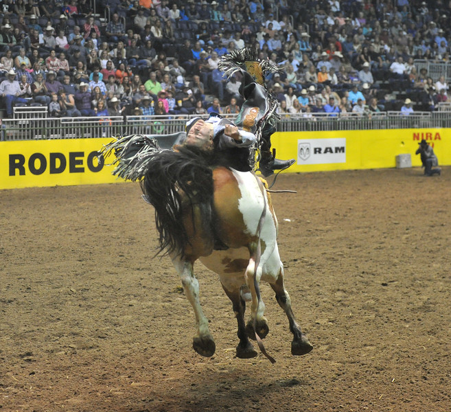 Bud Denega | The Sheridan Press<br /> Sheridan College's Chance Ames rides Bunny Girl in the short round of bareback riding during the College National Finals Rodeo at the Casper Events Center Saturday, June 16, 2018.