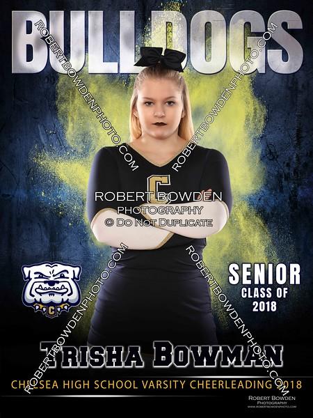 Trisha Bowman Banner Indoor Cheer 2017 SOCIAL