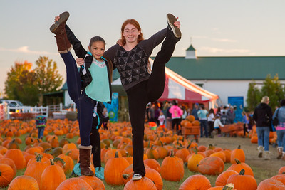 Premier Pumpkin Picking 2014-22