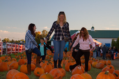 Premier Pumpkin Picking 2014-17