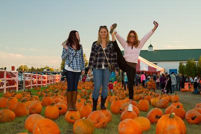 Premier Pumpkin Picking 2014-19