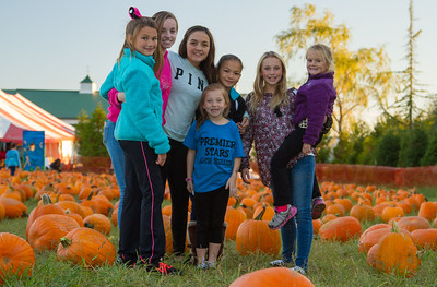 Premier Pumpkin Picking 2014-14