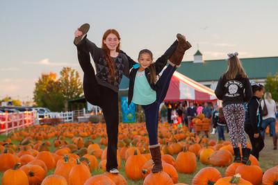 Premier Pumpkin Picking 2014-23