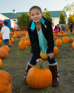 Premier Pumpkin Picking 2014-6