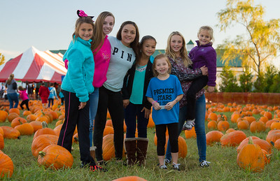 Premier Pumpkin Picking 2014-13