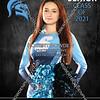 4 - Izzy Burling Livonia Stevenson Cheer Banner