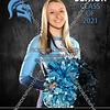 5 - Samantha McDermott Livonia Stevenson Cheer Banner