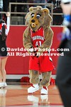 15 January 2011:  Davidson drops contest against SoCon rival Wofford 69-64 in basketball action at Belk Arena in Davidson, North Carolina.