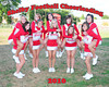 SHS Varsity Football Cheerleaders 2010 :