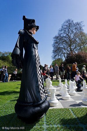 Chess in Holland Park 2011