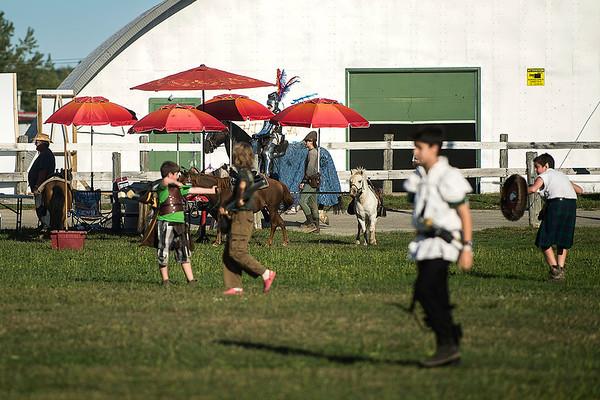 Chevaux/Horses