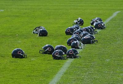 Chicago Bears 2010